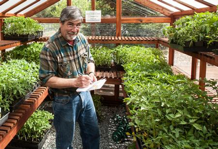 UC Master Gardener Steve Potter Inventorying Tomatoes